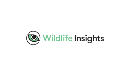 Wildlife Insights